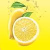 Roadside Lemonade