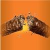 Chocolate - Peanut Butter